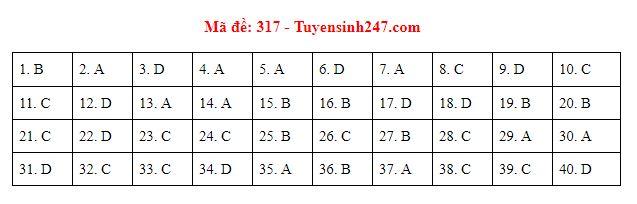 Gợi ý đáp án môn Lịch sử mã đề 316-317-318 tốt nghiệp THPT năm 2020 chuẩn nhất, chính xác nhất - Ảnh 2