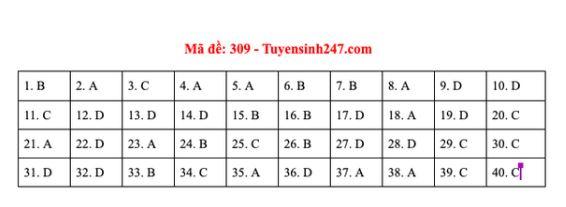Gợi ý đáp án môn Lịch sử mã đề 307-308-309 tốt nghiệp THPT năm 2020 chuẩn nhất, chính xác nhất - Ảnh 3
