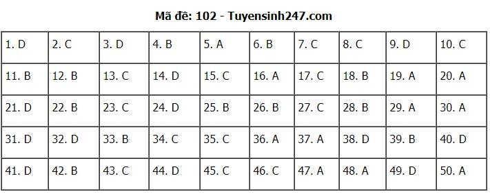 Đáp án môn Toán 24 mã đề tốt nghiệp THPT 2020 chuẩn nhất, chính xác nhất - Ảnh 1