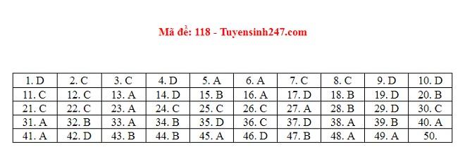 Gợi ý đáp án môn Toán mã đề 116, 117, 118 tốt nghiệp THPT 2020  - Ảnh 2