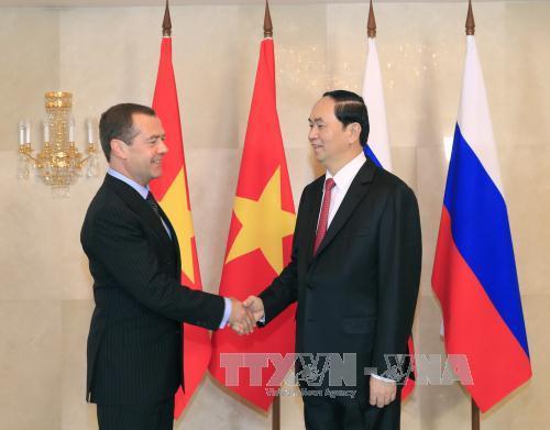 Chủ tịch nước Trần Đại Quang hội kiến Thủ tướng Nga Dmitry Medvedev - Ảnh 1