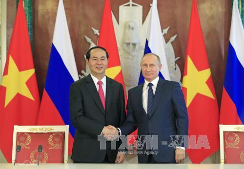 Chủ tịch nước Trần Đại Quang hội đàm với Tổng thống LB Nga Vladimir Putin - Ảnh 2
