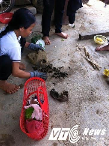 Nghệ An:Người dân đổ xô bắt đỉa bán cho thương lái 600 nghìn đồng/kg - Ảnh 2