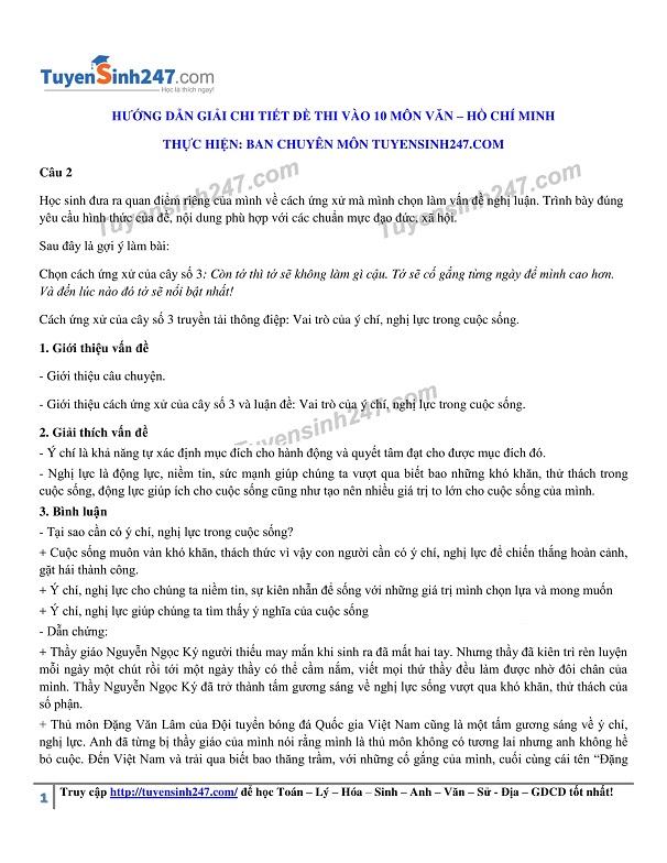 Đáp án, đề thi môn Ngữ Văn vào lớp 10 tại TP.Hồ Chí Minh chuẩn và chính xác nhất - Ảnh 4