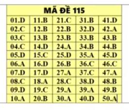 Tham khảo đáp án môn Toán mã đề 115 THPT quốc gia 2019 chuẩn nhất - Ảnh 1