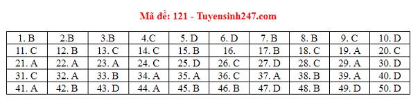 Đáp án môn Toán tất cả các mã đề THPT quốc gia 2019 chuẩn nhất, chính xác nhất (đầy đủ) - Ảnh 21
