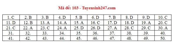 Đáp án, đề thi môn Toán mã đề 101,102,103,104,105 THPT quốc gia 2019 chuẩn nhất, chính xác nhất - Ảnh 3