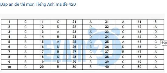 Đáp án môn tiếng Anh tất cả các mã đề THPT quốc gia 2019 chuẩn nhất (cập nhật) - Ảnh 14
