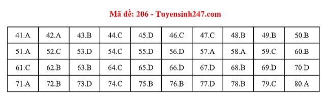Đáp án môn Hóa học tất cả các mã đề THPT quốc gia 2019 chuẩn nhất, chính xác nhất (cập nhật) - Ảnh 6