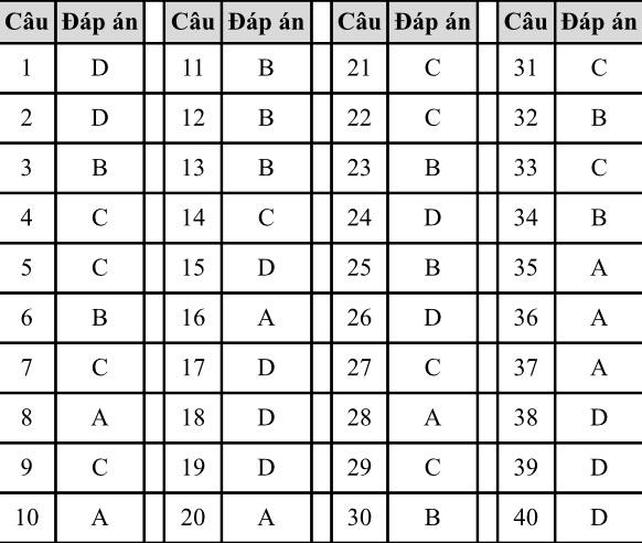 Đáp án, đề thi môn tiếng Anh vào lớp 10 mã đề 019 tại Hà Nội chuẩn nhất, nhanh nhất - Ảnh 1