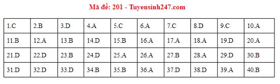 Đáp án, đề thi môn Vật lý mã đề 201 tốt nghiệp THPT 2020 chuẩn nhất, chính xác nhất - Ảnh 1