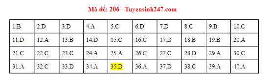 Gợi ý đáp án môn Vật lý mã đề 204-205-206 tốt nghiệp THPT 2020 - Ảnh 3