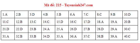 Đáp án, đề thi môn Vật lý mã đề 215 tốt nghiệp THPT 2020 chuẩn nhất, chính xác nhất - Ảnh 1