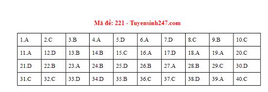 Gợi ý đáp án môn Vật lý mã đề 219-220-221 tốt nghiệp THPT 2020 - Ảnh 1