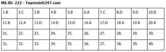 Đáp án, đề thi môn KHTN Hóa học - Vật lý - Sinh học mã đề 222 tốt nghiệp THPT 2020 chuẩn nhất, chính xác nhất - Ảnh 1