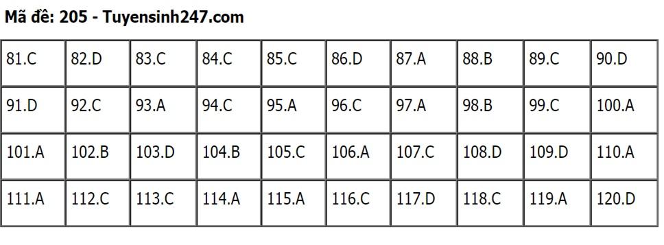 Gợi ý đáp án môn Sinh học mã đề 204-205-206 tốt nghiệp THPT 2020  - Ảnh 3
