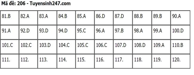 Gợi ý đáp án môn Sinh học mã đề 204-205-206 tốt nghiệp THPT 2020  - Ảnh 2