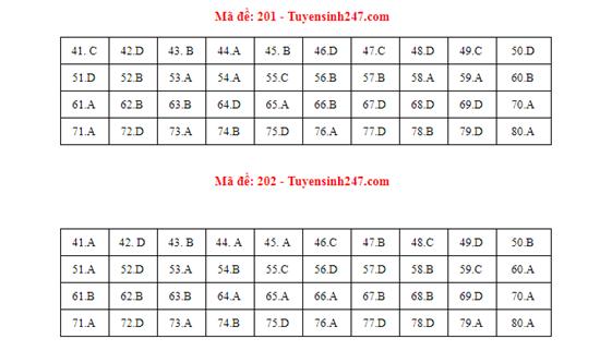 Đáp án, đề thi môn Hóa học mã đề 201 tốt nghiệp THPT 2020 chuẩn nhất, chính xác nhất - Ảnh 1