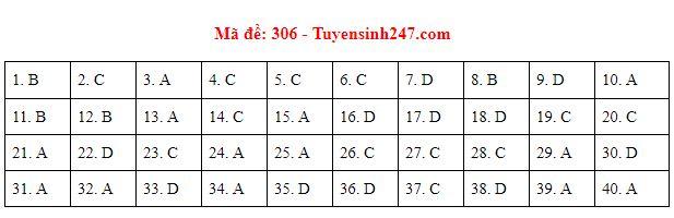 Gợi ý đáp án môn Lịch sử mã đề 304-305-306 tốt nghiệp THPT năm 2020 chuẩn nhất, chính xác nhất - Ảnh 3