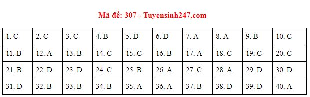 Đáp án, đề thi môn Lịch sử mã đề 307 tốt nghiệp THPT năm 2020 chuẩn nhất, chính xác nhất - Ảnh 1