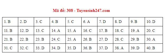 Gợi ý đáp án môn Lịch sử mã đề 307-308-309 tốt nghiệp THPT năm 2020 chuẩn nhất, chính xác nhất - Ảnh 2