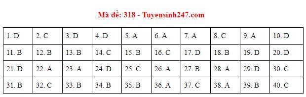 Gợi ý đáp án môn Lịch sử mã đề 316-317-318 tốt nghiệp THPT năm 2020 chuẩn nhất, chính xác nhất - Ảnh 3