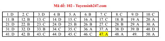 Đáp án, đề thi môn Toán mã đề 102 tốt nghiệp THPT 2020 chuẩn nhất, chính xác nhất - Ảnh 1
