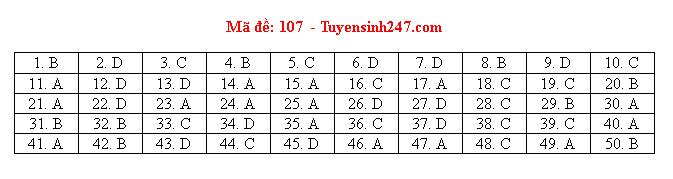 Gợi ý đáp án môn Toán mã đề 107, 108, 109 tốt nghiệp THPT 2020  - Ảnh 1