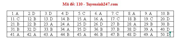 Gợi ý đáp án môn Toán mã đề 110,111,112 tốt nghiệp THPT 2020  - Ảnh 2