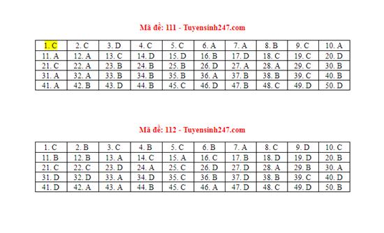 Gợi ý đáp án môn Toán mã đề 110,111,112 tốt nghiệp THPT 2020  - Ảnh 1