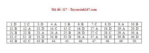 Gợi ý đáp án môn Toán mã đề 116, 117, 118 tốt nghiệp THPT 2020  - Ảnh 1