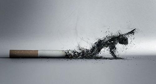 """Những bức ảnh khiến người hút thuốc lá sợ """"xanh mắt"""" - Ảnh 9"""