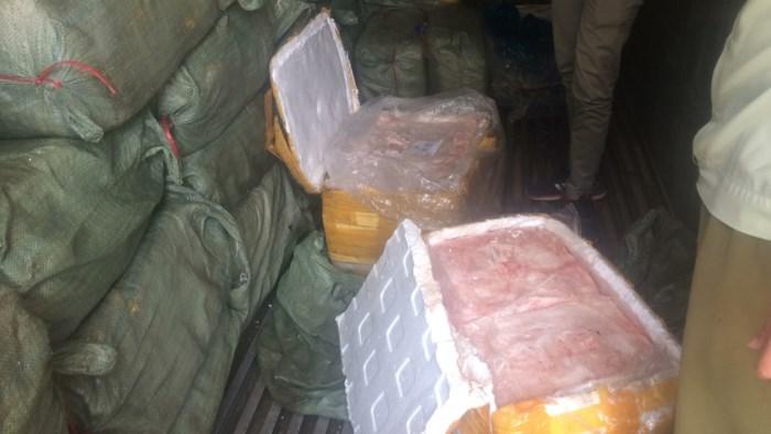 Thu giữ gần 14 tấn nầm heo hôi thối đang trên đường tới quán nhậu - Ảnh 2