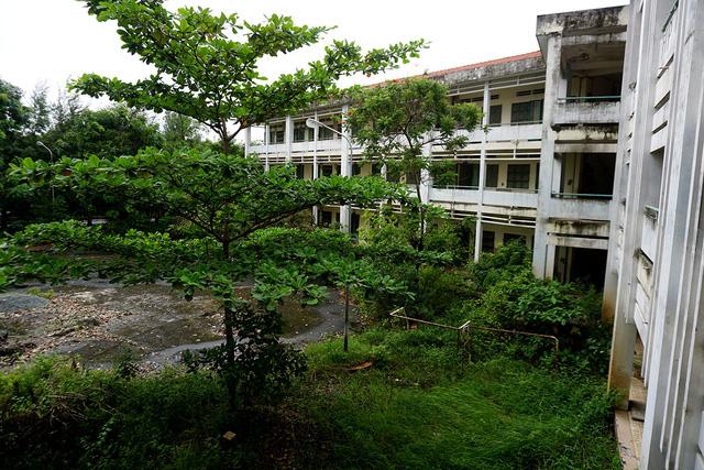 Hé lộ lý do ngôi trường được đầu tư 20 tỷ ở TP HCM bị bỏ hoang - Ảnh 3