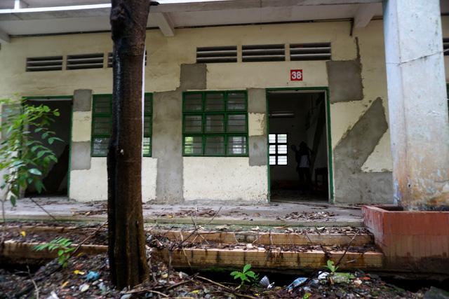 Hé lộ lý do ngôi trường được đầu tư 20 tỷ ở TP HCM bị bỏ hoang - Ảnh 5