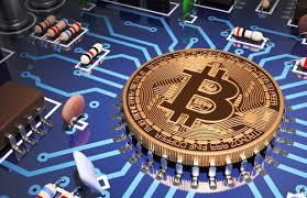 Môi trường bị ảnh hưởng nghiêm trọng vì bitcoin tăng giá - Ảnh 1