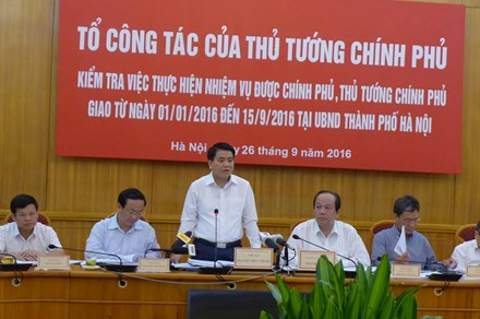 Hà Nội giảm hơn 700 tỷ đồng chi phí cắt cỏ tỉa cây - Ảnh 1