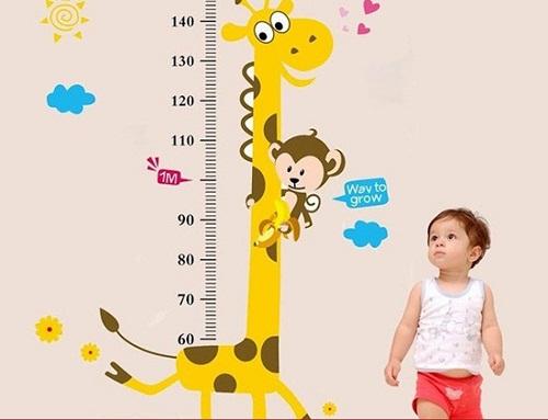 Cách tăng chiều cao cho bé 2 tuổi – điều phụ huynh cần biết - Ảnh 1