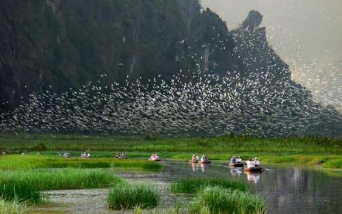 Top 4 địa danh du lịch ở Ninh Bình - vùng đất cố đô sơn thuỷ hữu tình - Ảnh 1