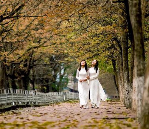Top 5 địa điểm chụp ảnh mùa thu ở Hà Nội đẹp đến nao lòng - Ảnh 1