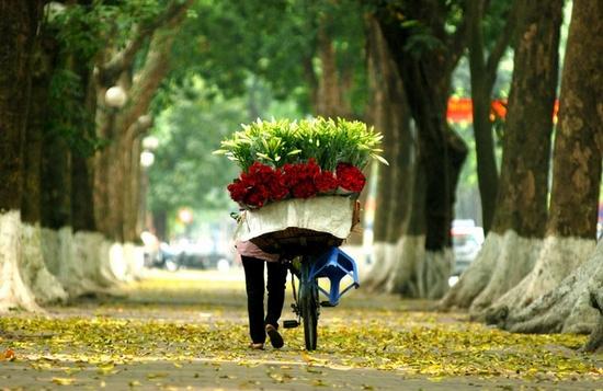Top 5 địa điểm chụp ảnh mùa thu ở Hà Nội đẹp đến nao lòng - Ảnh 3