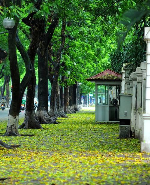 Top 5 địa điểm chụp ảnh mùa thu ở Hà Nội đẹp đến nao lòng - Ảnh 5