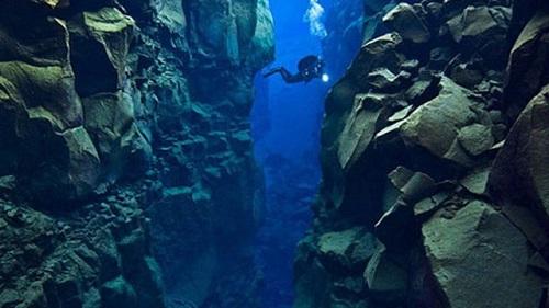 Tổng hợp những điều thú vị về đại dương xanh mà bạn chưa khám phá hết - Ảnh 3