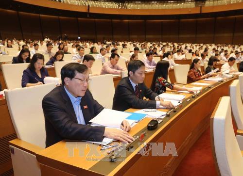 Quốc hội thông qua dự án Luật Lâm nghiệp - Ảnh 1