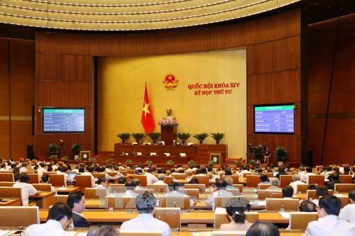 Quốc hội thông qua dự án Luật Lâm nghiệp - Ảnh 2