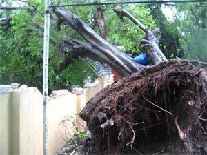5 cơn bão khủng khiếp từng đổ bộ vào Việt Nam - Ảnh 3