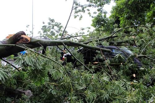 1 người chết, một mất tích trước bão số 10 ở Thừa Thiên Huế - Ảnh 1
