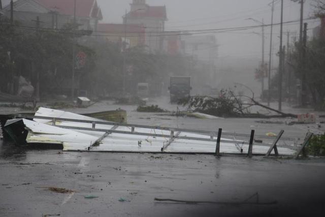 Trưởng thôn tử nạn khi phát quang cây cối sau bão số 10 - Ảnh 1