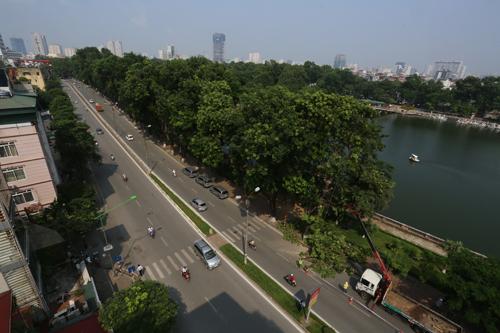 Hà Nội di dời, chặt hạ 130 cây xanh trên đường Kim Mã - Ảnh 2