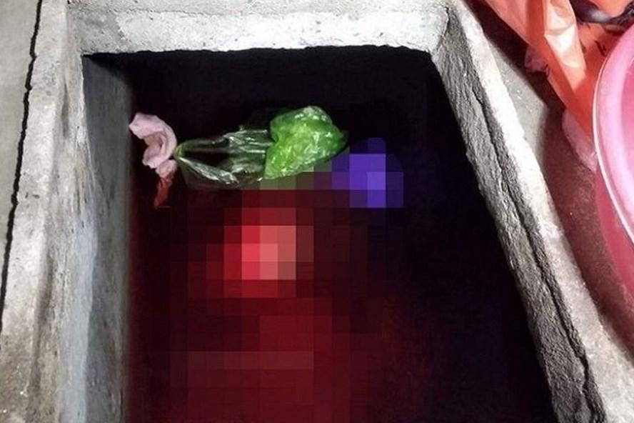 Vụ con rể sát hại mẹ vợ ở Thái Bình: Khởi tố, tạm giam bị can Vũ Đức Bộ - Ảnh 1